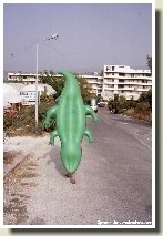 Kefalonia - The Crocodile